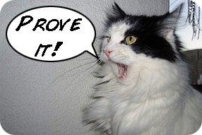 skeptic cat